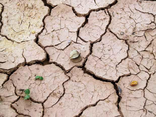 arid barren clay cracks
